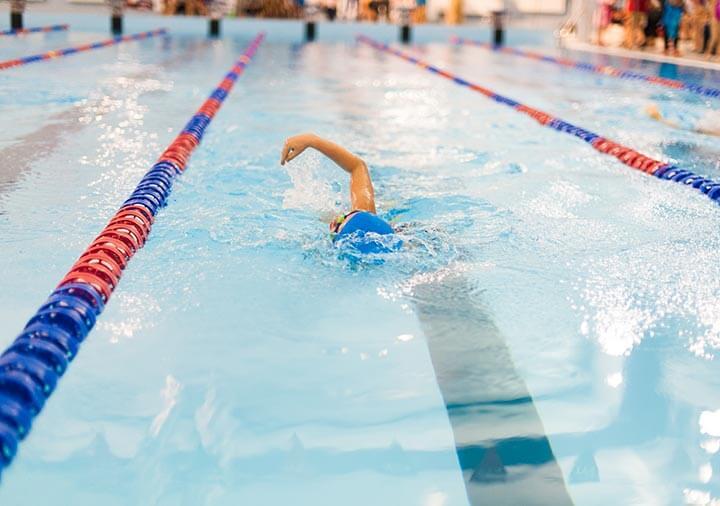 Świąteczne Mistrzostwa Szkoły Pływania Delfin Gdynia